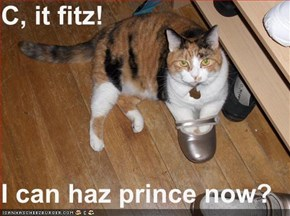 C, it fitz!  I can haz prince now?