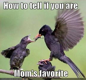 How to tell if you are   Mom's favorite