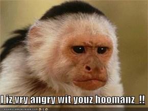 I iz vry angry wit youz hoomanz  !!