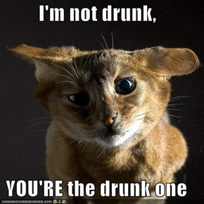 I'm not drunk,  YOU'RE the drunk one