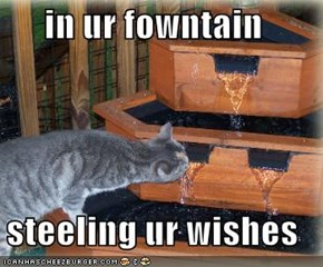 in ur fowntain  steeling ur wishes