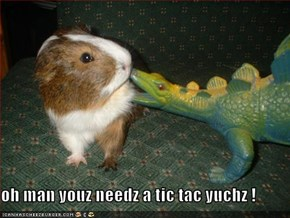 oh man youz needz a tic tac yuchz !