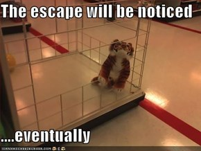 The escape will be noticed  ....eventually