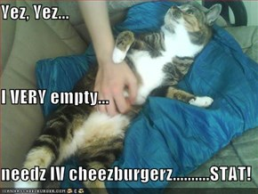Yez, Yez... I VERY empty... needz IV cheezburgerz..........STAT!