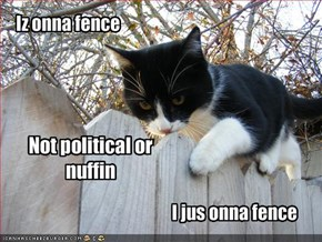 Iz onna fence