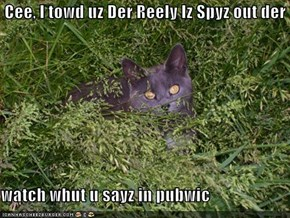 Cee, I towd uz Der Reely Iz Spyz out der  watch whut u sayz in pubwic