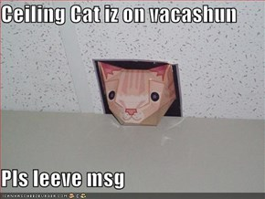 Ceiling Cat iz on vacashun  Pls leeve msg