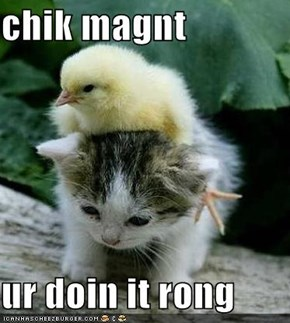 chik magnt  ur doin it rong