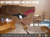 HEY HOWZ COMZ SHE GETS TO BE   ON THE COUCH?
