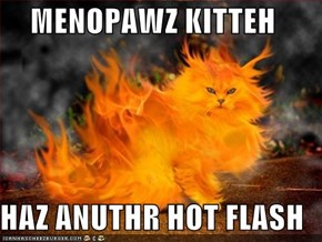 MENOPAWZ KITTEH  HAZ ANUTHR HOT FLASH