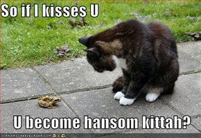 So if I kisses U  U become hansom kittah?
