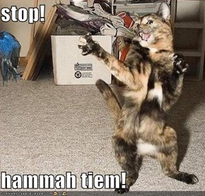 stop!  hammah tiem!