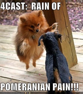 4CAST:  RAIN OF  POMERANIAN PAIN!!!