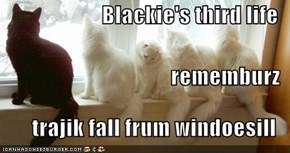 Blackie's third life rememburz trajik fall frum windoesill