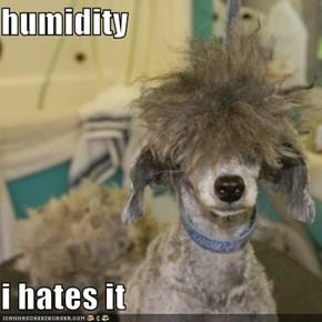 humidity  i hates it
