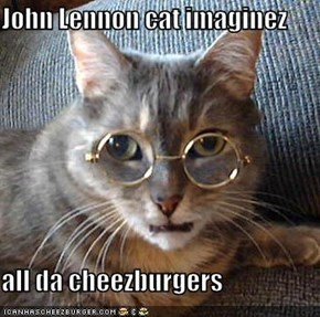 John Lennon cat imaginez  all da cheezburgers