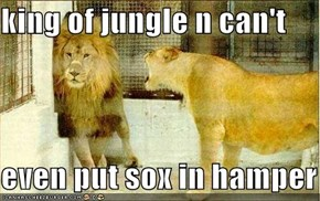 king of jungle n can't  even put sox in hamper