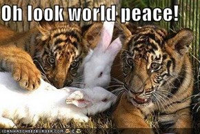 Oh look world peace!