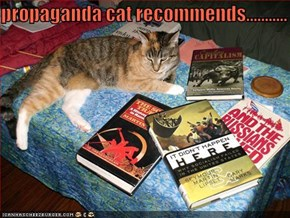 propaganda cat recommends...........