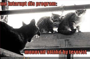 we intarupt dis program:  monorail attakd by terorist