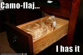 Camo-flaj...  I has it