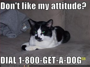 Don't like my attitude?  DIAL 1-800-GET-A-DOG