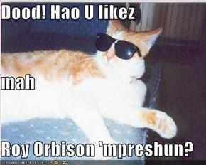 Dood! Hao U likez mah Roy Orbison 'mpreshun?