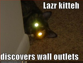 Lazr kitteh  discovers wall outlets