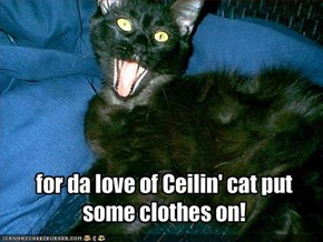 for da love of Ceilin' cat put some clothes on!