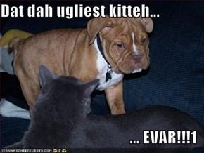 Dat dah ugliest kitteh...  ... EVAR!!!1