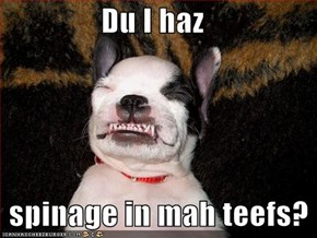 Du I haz     spinage in mah teefs?