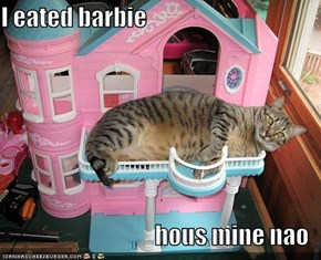 I eated barbie  hous mine nao