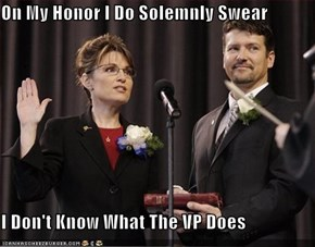 On My Honor I Do Solemnly Swear  I Don't Know What The VP Does