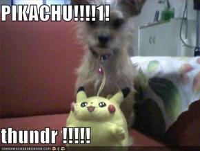 PIKACHU!!!!1!   thundr !!!!!