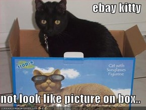ebay kitty  not look like picture on box..