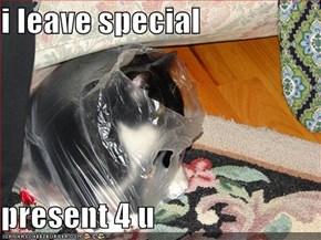 i leave special  present 4 u