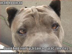 "mah hooman  ....dunn kno wut ""p3rsunae spac"" meens."