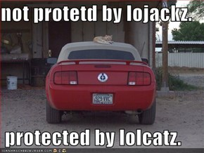 not protetd by lojackz.   protected by lolcatz.