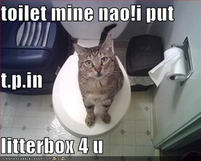 toilet mine nao!i put t.p.in litterbox 4 u