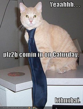 Yeaahhh. . . plz2b comin in on Caturday, kthnxbai.