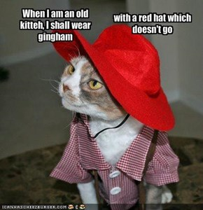 When I am an old kitteh, I shall wear gingham
