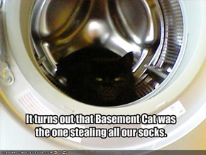 It turns out that Basement Cat was  the one stealing all our socks.