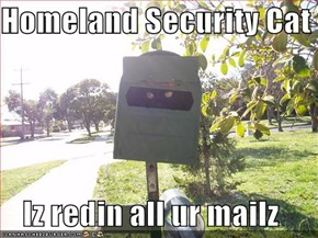 Homeland Security Cat  Iz redin all ur mailz