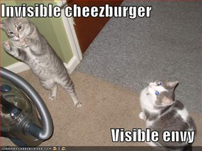 Invisible cheezburger  Visible envy
