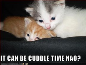 IT CAN BE CUDDLE TIME NAO?