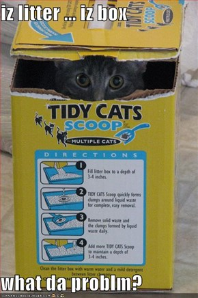 iz litter ... iz box  what da problm?
