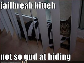 jailbreak kitteh  not so gud at hiding
