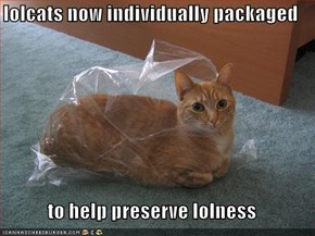 lolcats now individually packaged  to help preserve lolness