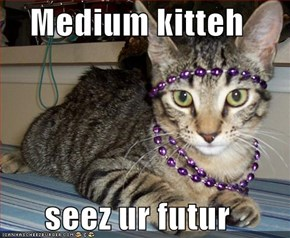Medium kitteh  seez ur futur