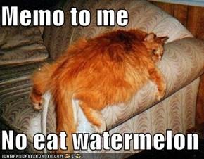 Memo to me  No eat watermelon